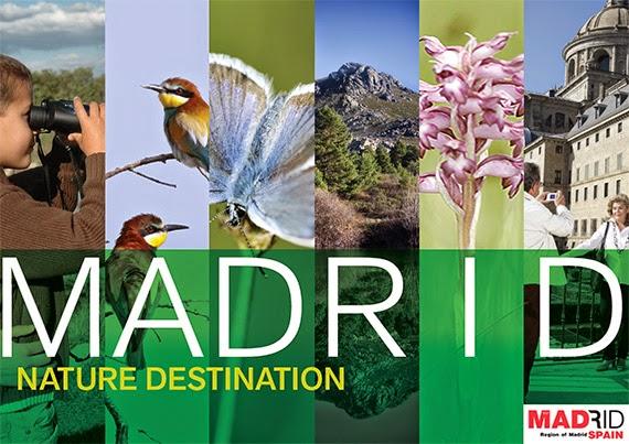 9 rutas por Madrid para disfrutar de la Naturaleza, del deporte y las aves