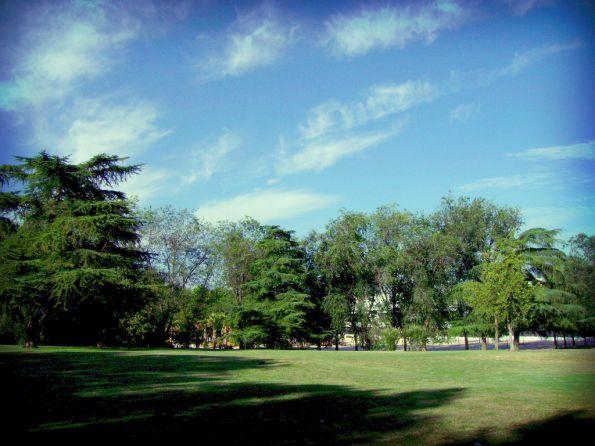 picnic14