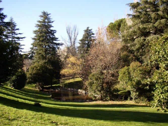 Los 21 lugares idílicos de Madrid para irse de picnic