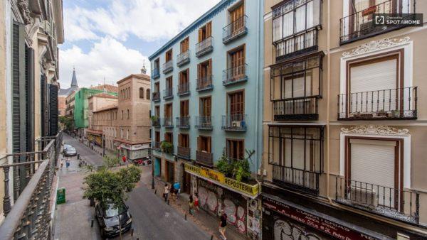 foto de la calle Pez