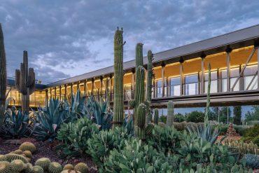 Uno de los mayores secretos de Madrid, un jardín de cactus tan grande como un campo de futbol