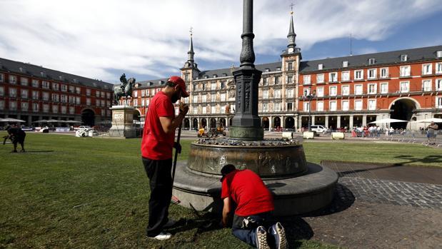 foto Plaza Mayor pradera