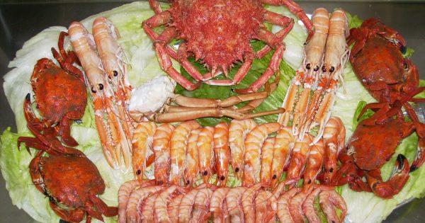 plato de mariscos de la feria del marisco las rozas