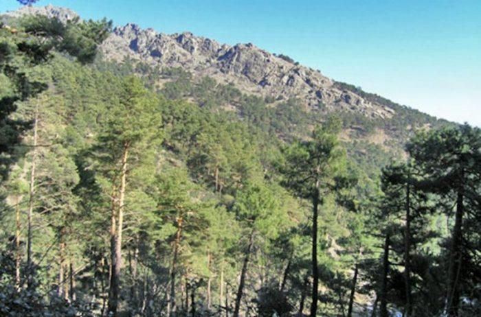 San Lorenzo de El Escorial, plan ideal para este verano