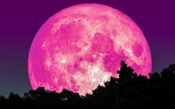 La Luna rosa 2021 será la superluna más grande y brillante de todo el año
