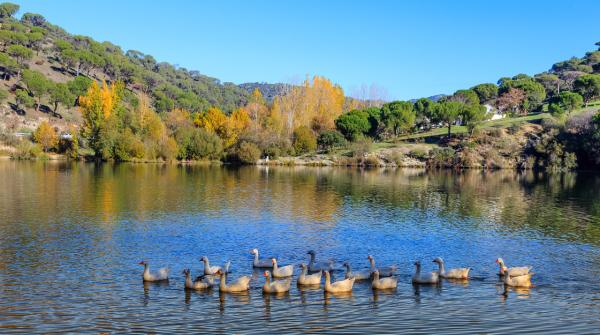 Cinco paraisos naturales de Madrid muy poco conocidos
