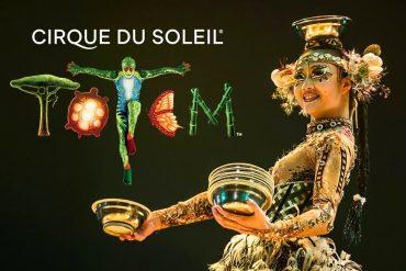 Circo Del Sol Ofrece Gratis Sus Espectáculos 'Totem', 'Volta' y 'Corteo'