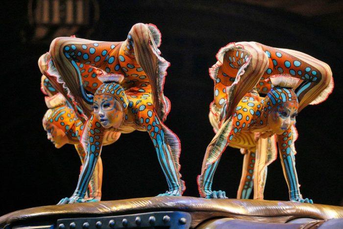 Circo del sol ofrece gratis sus mejores números de contorsión