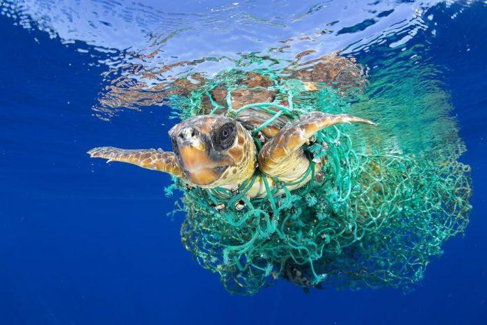 Nueva ley de residuos para reducir la contaminación con plásticos