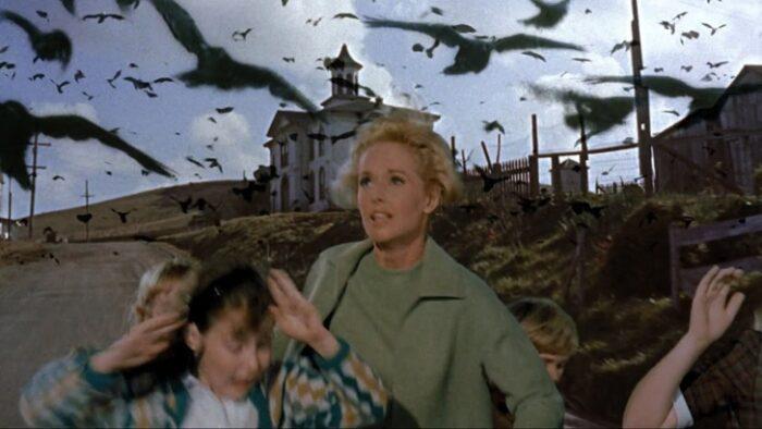 El Museo Reina Sofía ofrecerá gratis cine de verano en su jardín