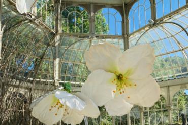El Palacio de Cristal de El Retiro se llena de flores gigantes