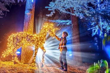 Un millón de luces iluminarán el Jardín Botánico estas Navidades
