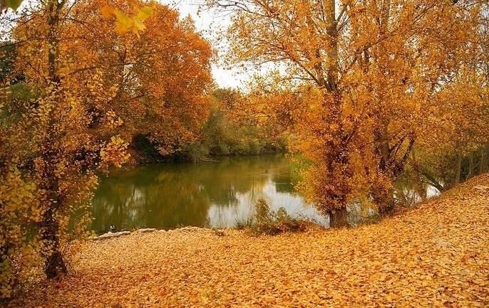 Los mejores parques de Madrid para disfrutar de los colores de otoño