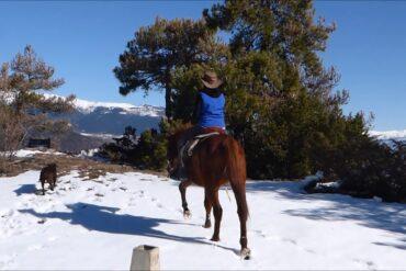Un jinete de Majadahonda va a caballo para hacer la compra