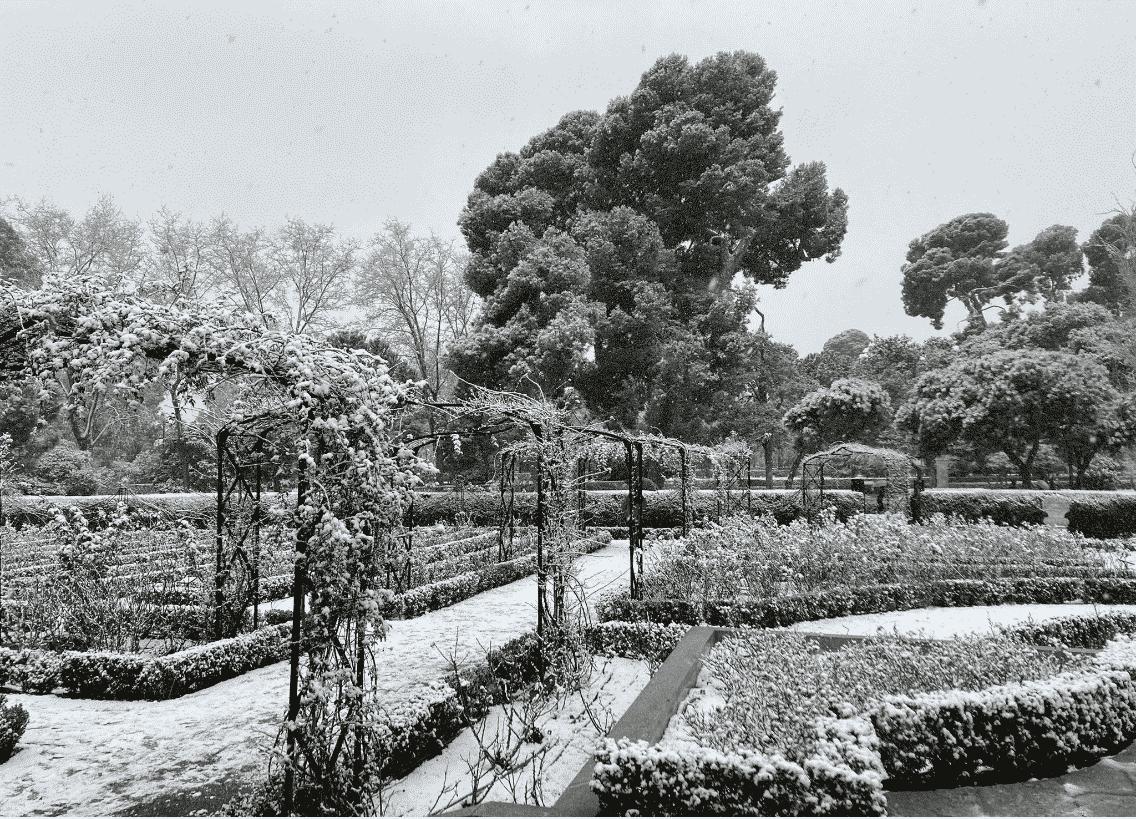 Las mejores imágenes de la nevada en Madrid capital