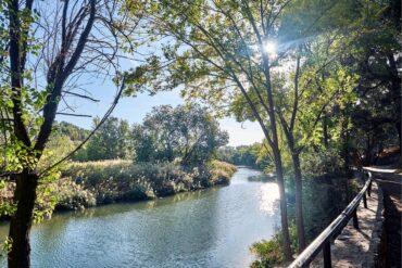 Ruta de senderismo por las lagunas del río Henares