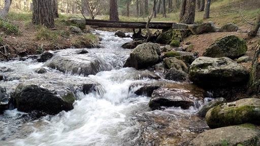 Disfruta de la naturaleza de Madrid con el Camino del Agua