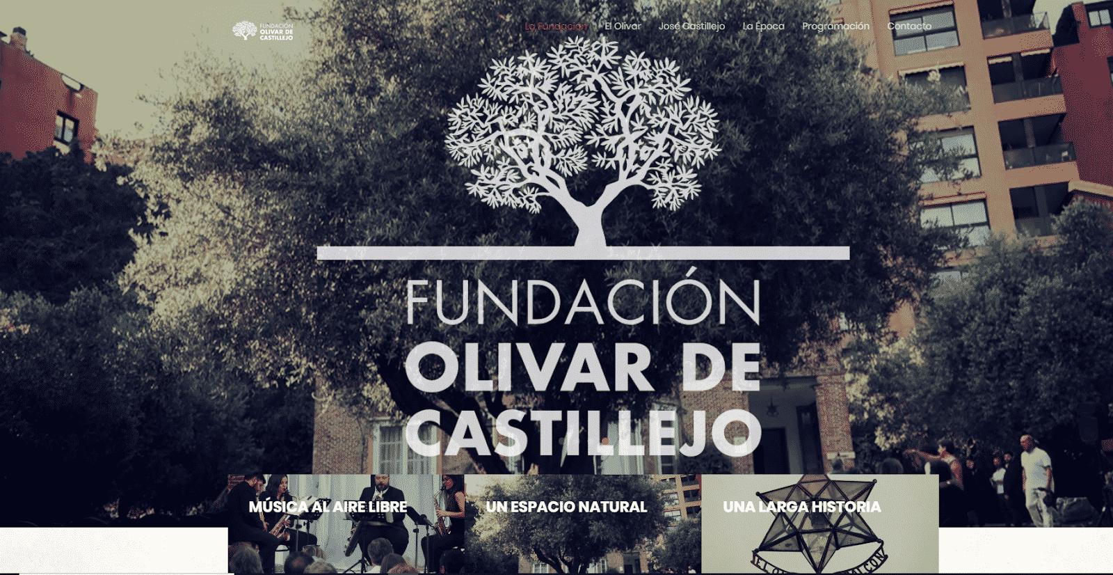 Las Noches del Olivar 2021 llenan de música un jardin secreto de olivos